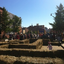 Hay maze in the city